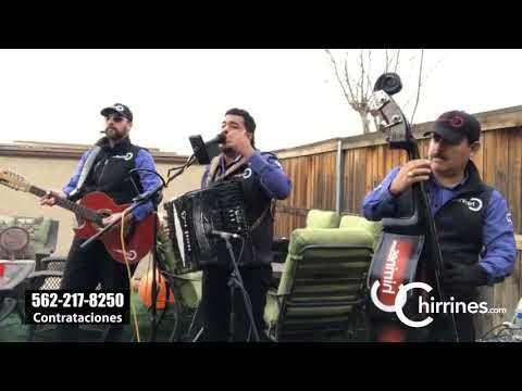 Chirrines Con Tololoche Los Angeles Riverside San Bernardino: Mi Linda Esposa - Mario Medina