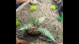 Making Prehistoric Diorama Ferns -A How-to Modeling Tip