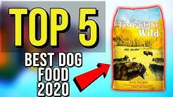 ✅ TOP 5: Best Dog Food 2020