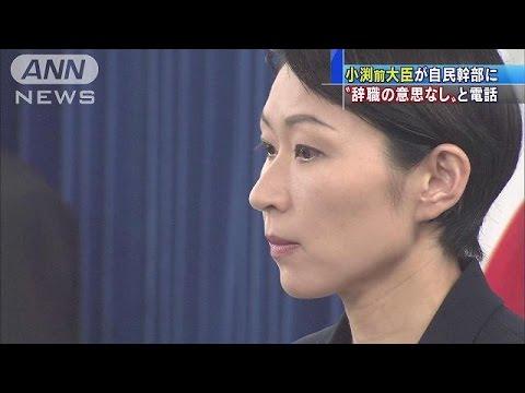 「国会議員の職務を全うしたい」小渕優子前経産大臣(14/10/30)