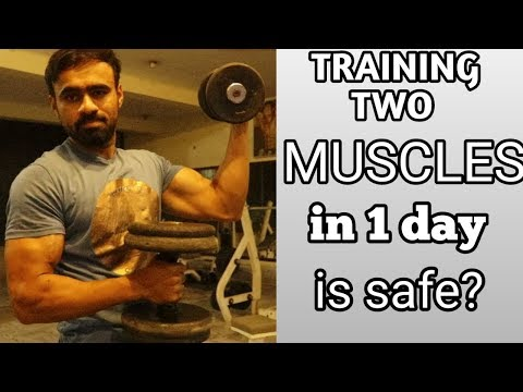 Train These Muscles Together | 2 Body Parts in One Day Good or Bad ?