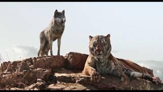 The Jungle Book 2016 - Shere Khan Kills Akela (Korean Dub)