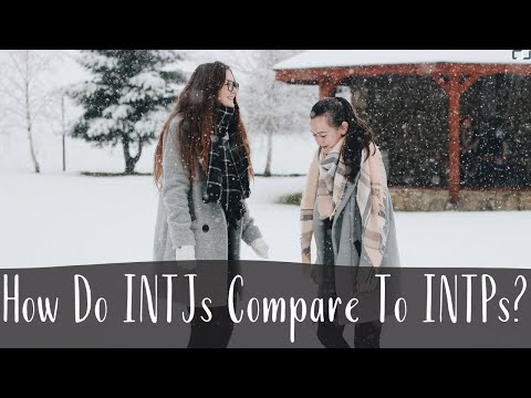 How Do INTJs Compare To INTPs?