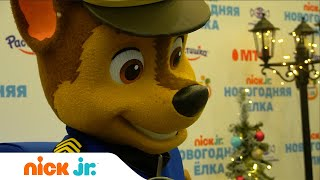 Новогодняя Ёлка Nick Jr. в КЗ Останкино   Nick Jr. Россия