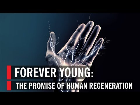 The Promise of Human Regeneration: Forever Young