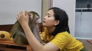 Monkey Baby Nui Sleepy Nui still wants to eat