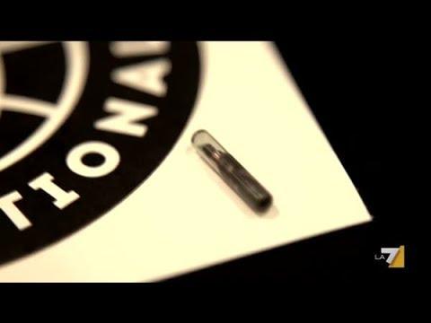 Intervista 'La Gabbia Open' (La7): I microchip sottopelle, da fantascienza diventa realtà