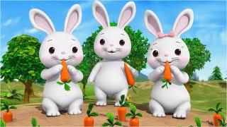 Chú Thỏ Con - Chú Mèo Con - Nhạc thiếu nhi vui nhộn Kênh Bé Yêu