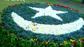 #independence Day status/ Pakistani Independence Day status song/ 14 August status song