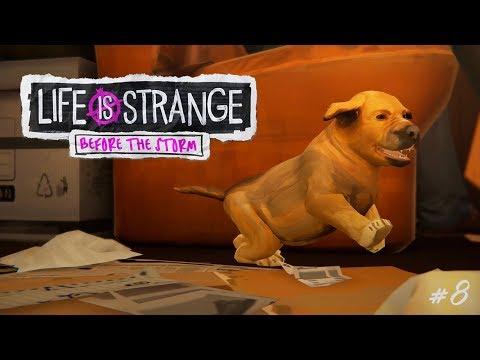 O CACHORRO MAIS FOFO DO MUNDO | Life is Strange: Before The Storm #8 (Admirável Mundo Novo)