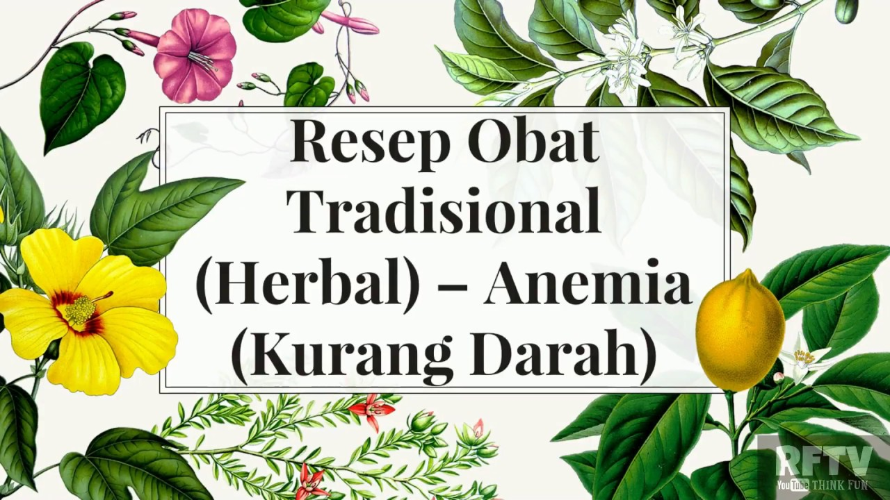 Anemia Kurang Darah Resep Obat Tradisional Herbal YouTube