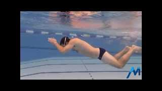 Monnow Swimming Club - Butterfly drills and tips