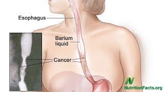 Jahody vs. rakovina jícnu
