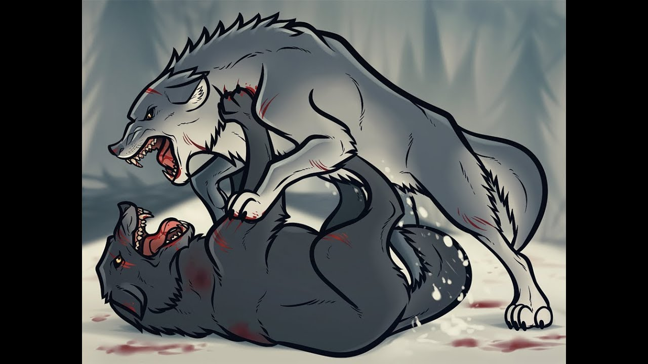 Fighting Wolves Drawing, Time Lapse Wolf Fight Process ...