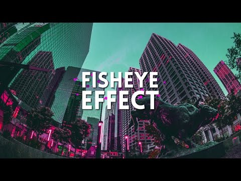 Fish Eye Lens Effect In After Effects  | After Effects Tutorial 2017