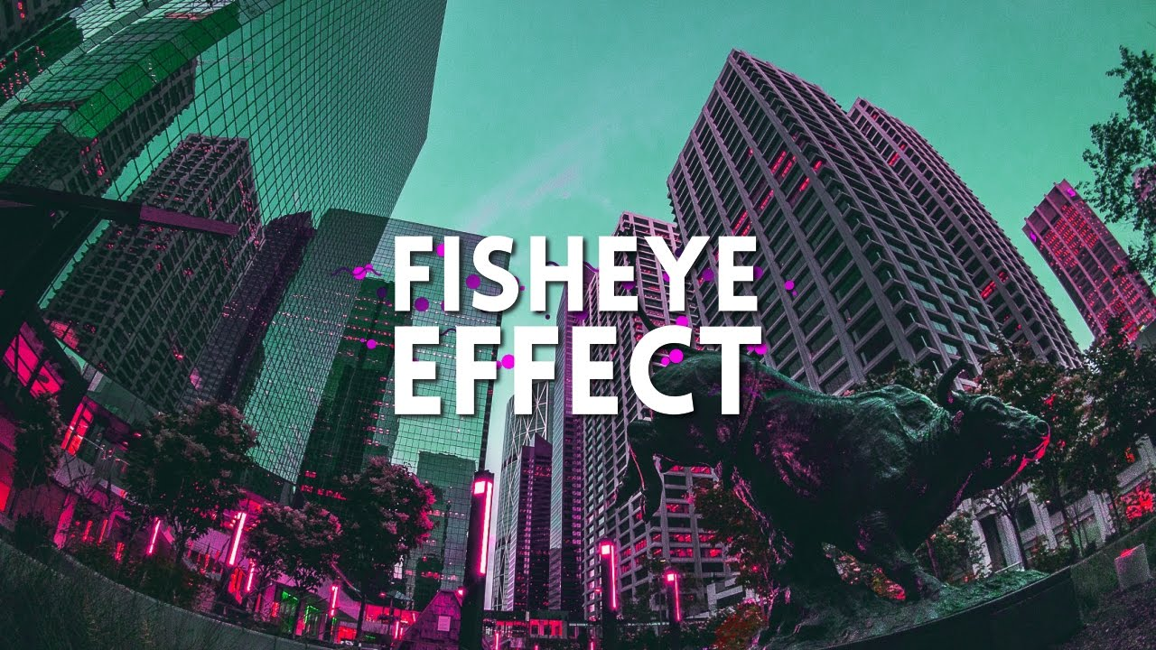 Fish eye lens effect in after effects after effects for Fish eye effect