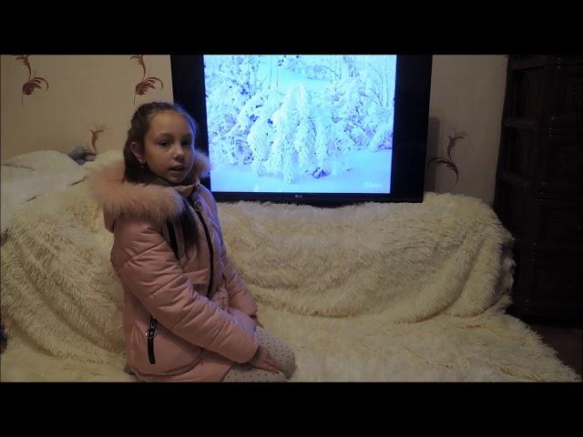 Изображение предпросмотра прочтения – АлинаЛогутова читает произведение «Зима» С.А.Есенина