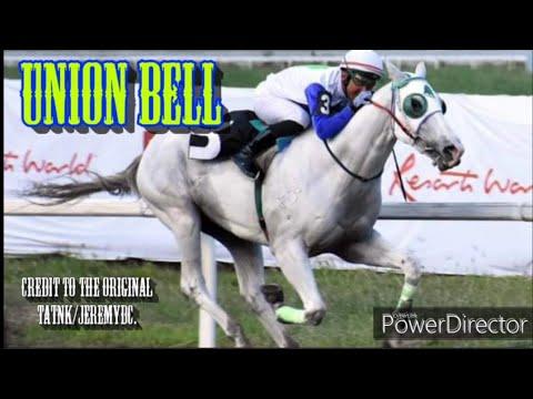 UNION BELL - 20th PHILTOBO GRAND CHAMPIONSHIP (2019 Philtobo Juvenile Championship)