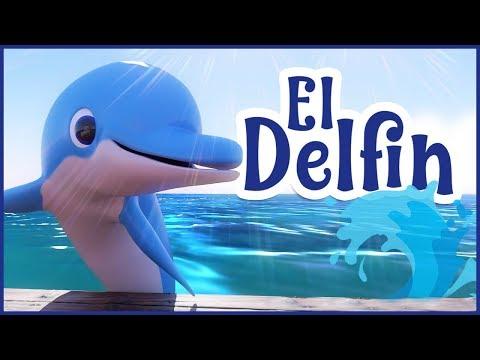 Mi amigo el delfín -  Canciones para niños - Música para bebes
