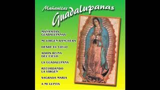 📀Mañanitas Guadalupanas (Discos Completo) Los Regionales Norte📀
