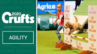 YKC Agility Dog of the Year | Crufts 2020
