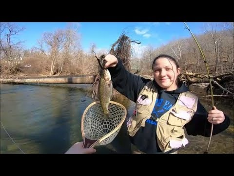 Out Fished!!?? (Daniels Area-Patapsco River)