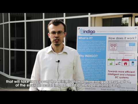 Indigo - Partners Interview