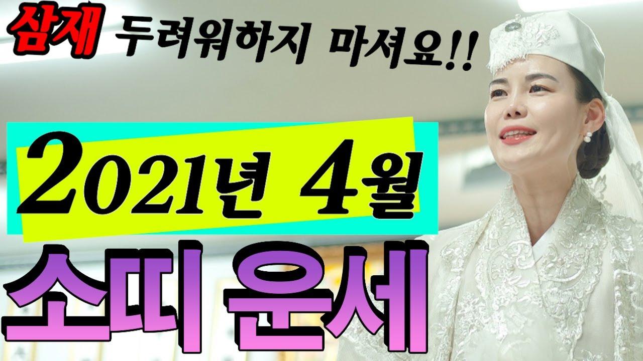 [신점][용한점집]2021년 4월 소띠운세^^(삼재라고 두려워하지 마셔요!!)