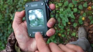 обзор трекера Bushnell BackTrack или как не заблудится в лесу GPS