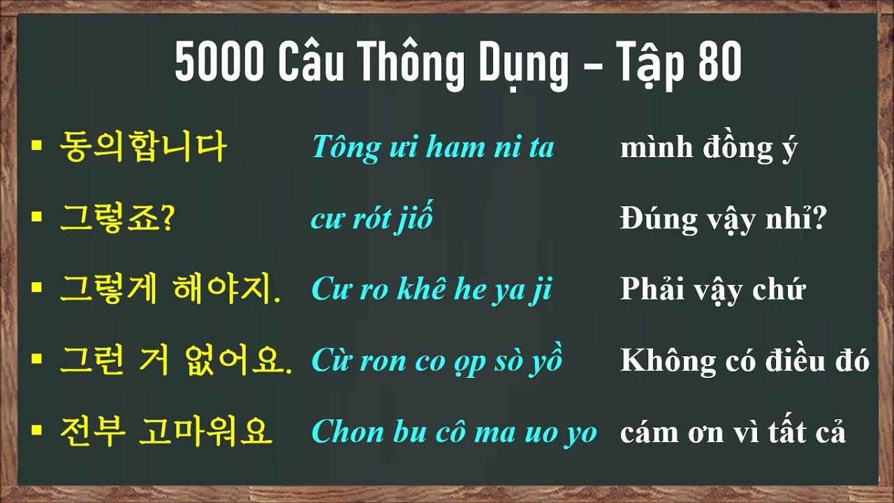 [Tập 80] - 5000 Câu Tiếng Hàn Giao Tiếp Thông Dụng | 실제로 자주 쓰는 한국어 문장들