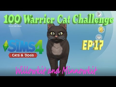 100 Warrior Cats Challenge~ Sims 4 Cats and Dogs~ Ep. 17