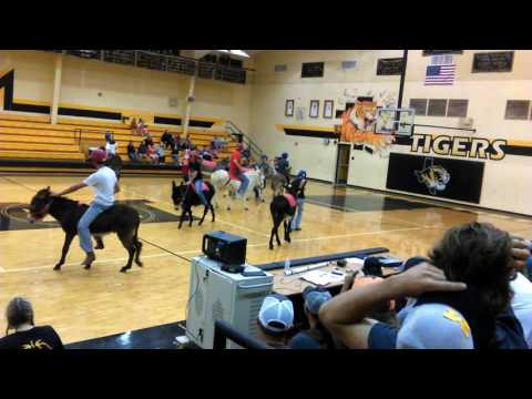Donkey Basketball @ Malakoff High Tx