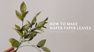 HOW TO MAKE WAFER PAPER LEAVES (EXTREMELY EASY)