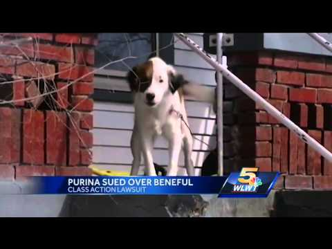 Class action lawsuit claims Purina Beneful sickening, killing dogs