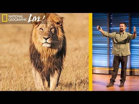 Filming Africa's Top Predators : Beyond 'Savage Kingdom' (Part 2) | Nat Geo Live