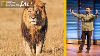 Beyond 'Savage Kingdom'  Filming Africa's Top Predators (Part 2) | Nat Geo Live