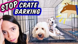 STOP Puppy Crying in Crate   How To Crate Train a New Puppy!