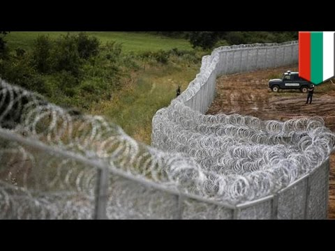 Bulgaria to expand fence on border with Turkey as route becomes popular with Islamic State recruits