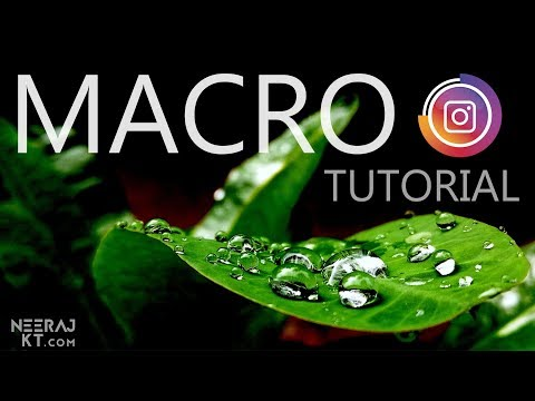 Click Incredible Macro Pictures On Any MOBILE!!