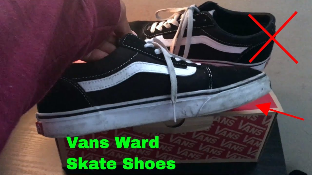 ✅ How To Use Vans Ward Canvas Shoes Review