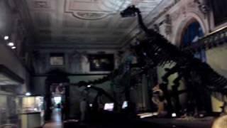 Austria - Natural History Museum