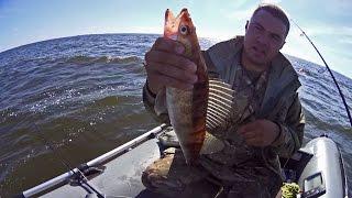 Двухдневная рыбалка джигом на Волге в Ульяновске. День первый.(Ловля спиннингом на джиг щуки, судака, берша, окуня. Используемые снасти: - спиннинг Hearty Rise Stalker SR-802ML - катушка..., 2015-12-12T19:14:05.000Z)