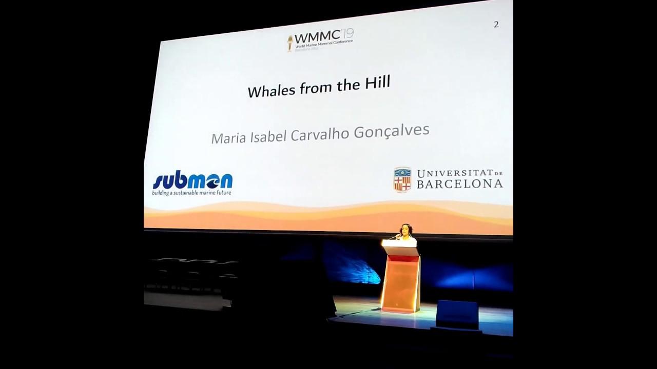 Projeto Baleias na Serra em Barcelona
