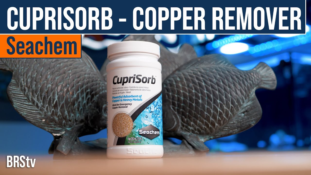 Copper Or Heavy Metals In Your Reef Tank?! Seachem CupriSorb Can Help Remove Them.