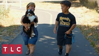 Zach and Amy Take Murphy for a Walk | Little People, Big World