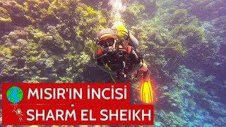 Mısır'ın İncisi Sharm El Sheikh   Şarm El Şeyh   MISIR VLOG #4