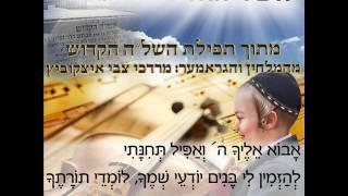 שיר חדש מלא רגש על תפילת השלה