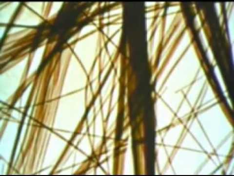 asbestos-a-matter-of-time-1959-us-bureau-of-mines