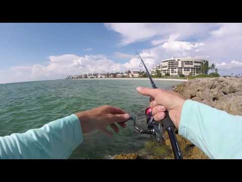 Fishing Naples Beach/ Jetty Fishing
