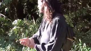 Nettles ~ Rootstalk Plant Walk with jim mcdonald
